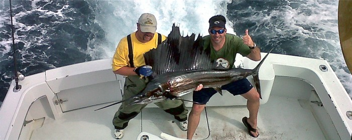 miami sailfishing charters