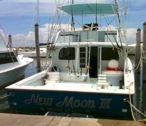 new moon sportfishing boats